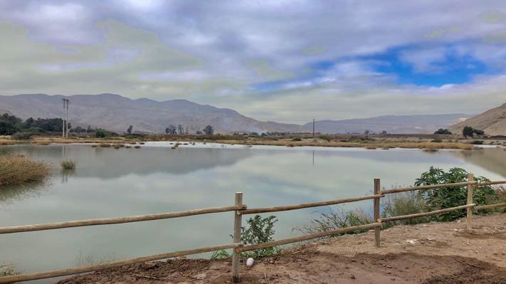 Recarga de acuíferos subterráneos: Proponen otra alternativa para la gestión de agua ante escasez hídrica